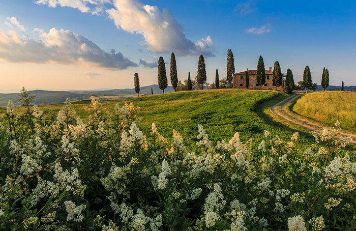 All properties in Tuscany